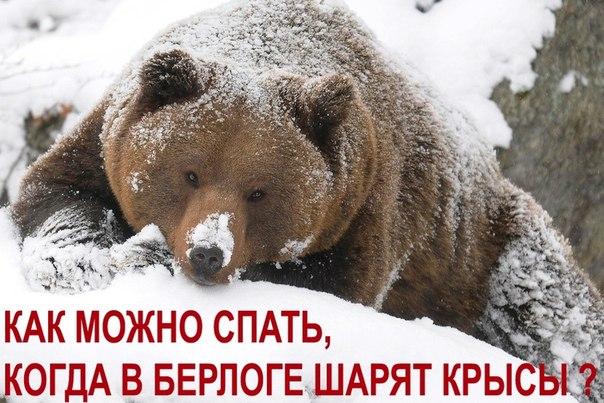 Резолюция митинга Русской коалиции действия